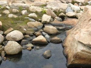 Rocks in Still Water