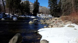 Roaring_Fork_from_backyard